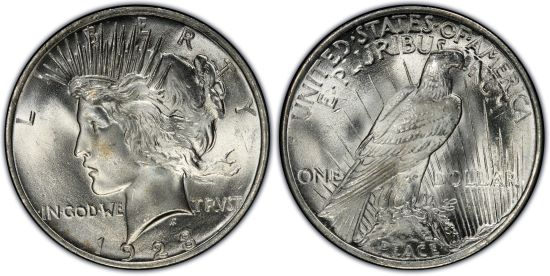 http://images.pcgs.com/CoinFacts/06666679_1554813_550.jpg