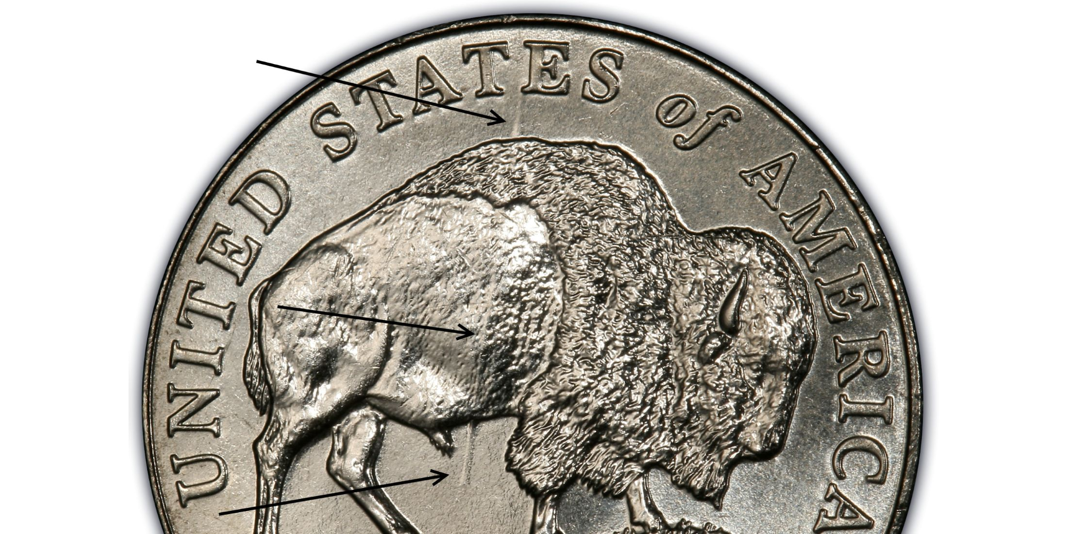 2005-D 5C Speared Bison (Regular Strike) - PCGS CoinFacts