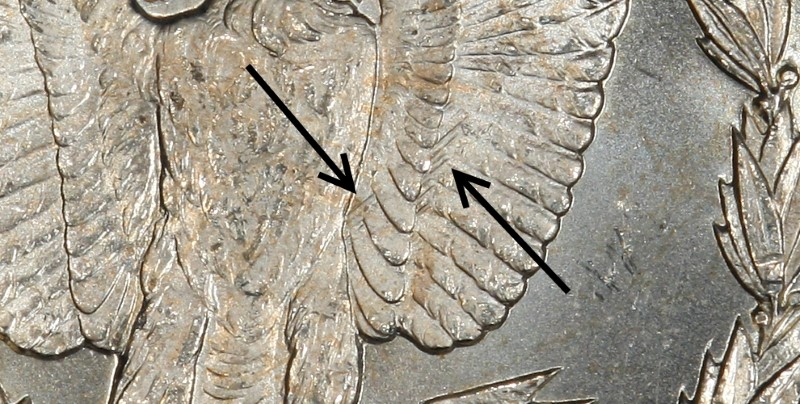 """CLOSEUP OF """"WING LINES"""""""