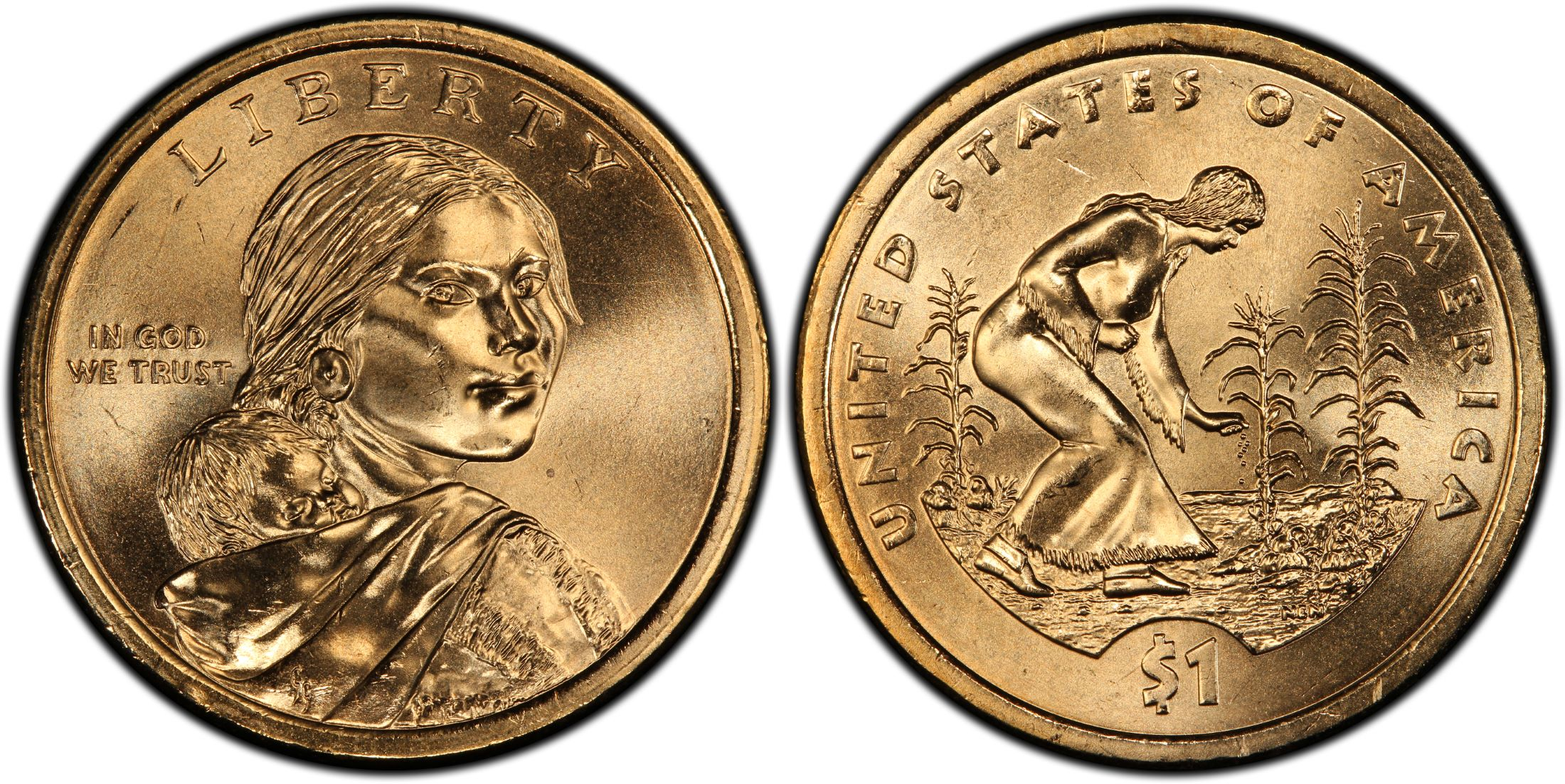 2019 P Native American Sacagawea Position A Business Strike from US Mint Roll