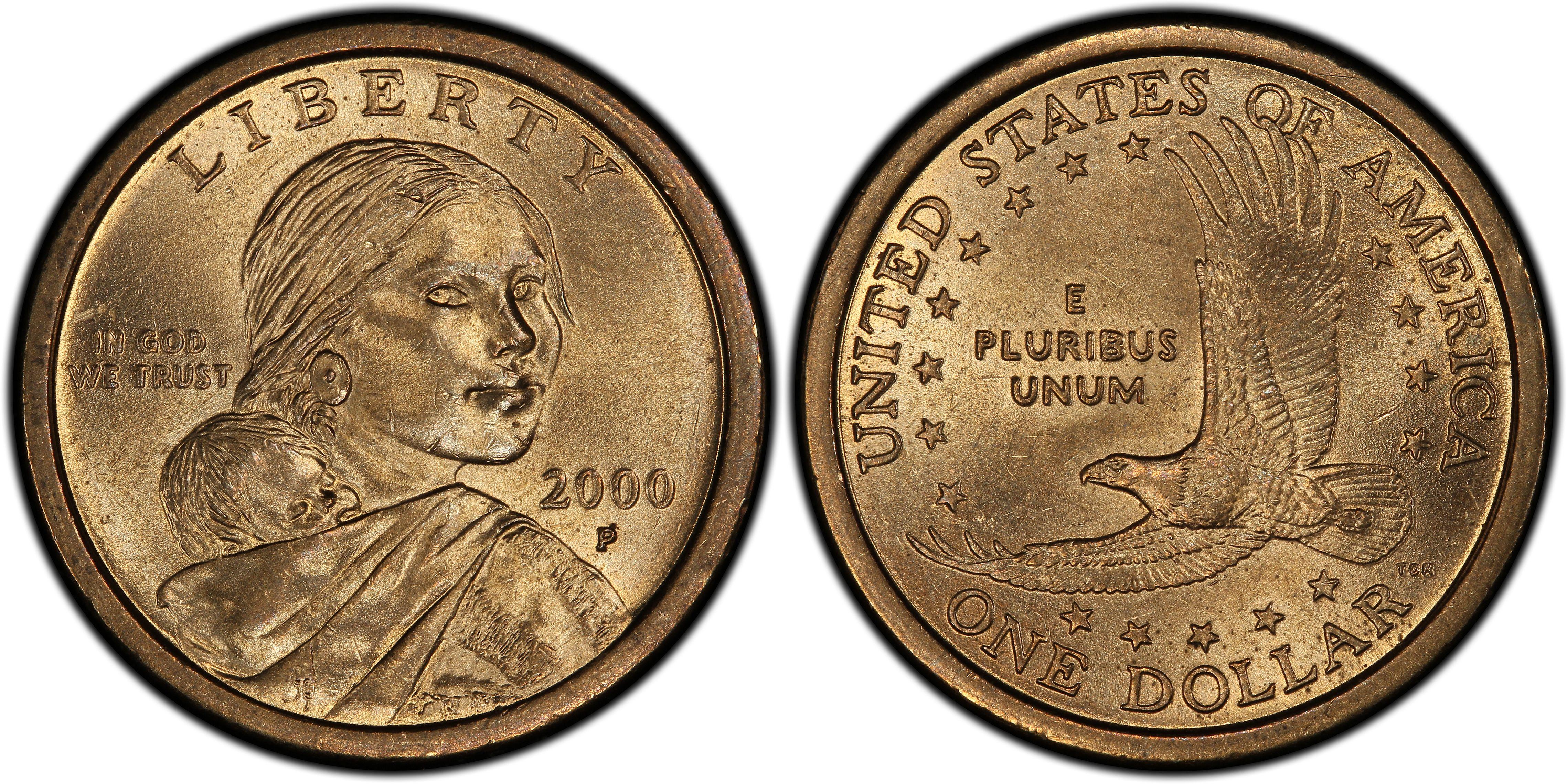 sacagawea coin 2000 p wounded eagle
